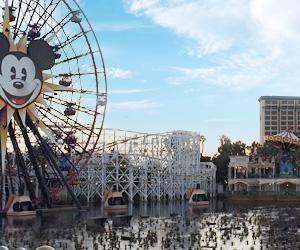 バスケだけじゃない!アメリカを楽しみ尽くせるプラン・ハリウッド観光のイメージ